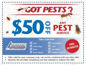 Tristate Pest Website Offers7
