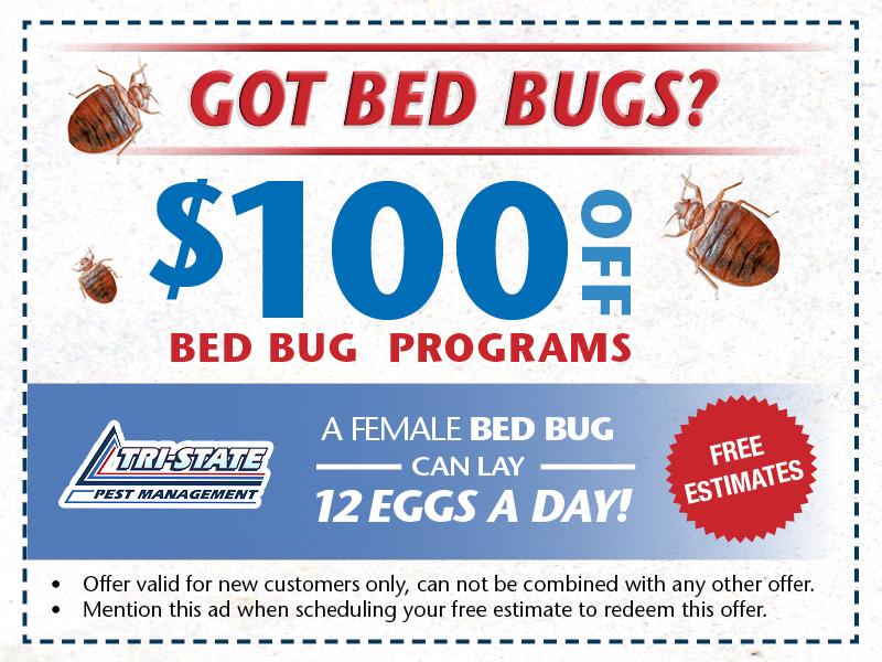 Tristate Pest Website Offers8