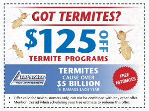 Tristate Pest Website Offers9